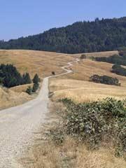 Bald Hills Road, CA