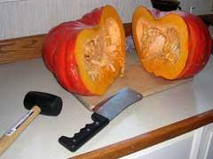Mr. Pumpkin's Wild Ride